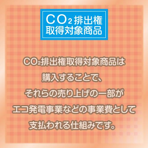 コットンコンビニバッグ04